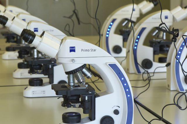 Mikroskopie im ersten Ausbildungsjahr